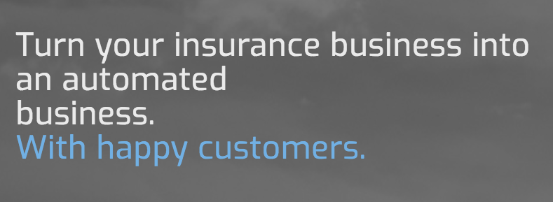 This screenshot from Christoph's website gives you a good understanding of what he's offering the world of insurance.