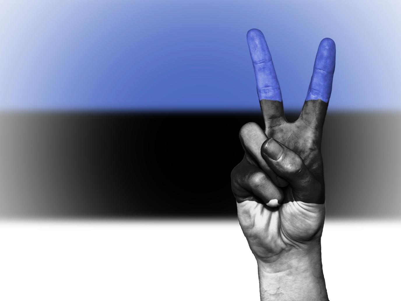 Estonian e-Citizenship is a Mistake You Should NOT Make